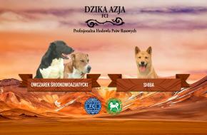 Hodowla Dzika Azja FCI